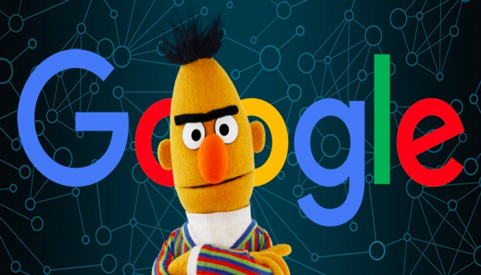 immagine dell'algoritmo Google Bert